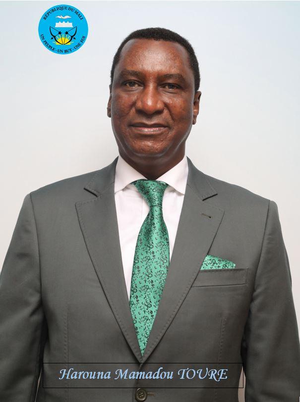 M. Harouna Mamadou Toureh